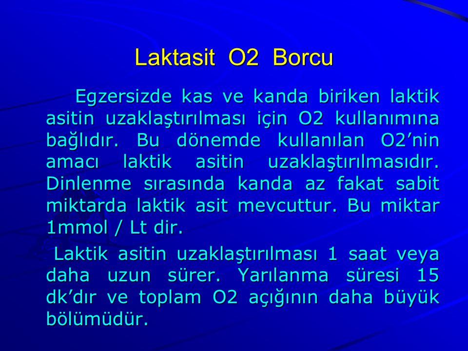 Laktasit O2 Borcu