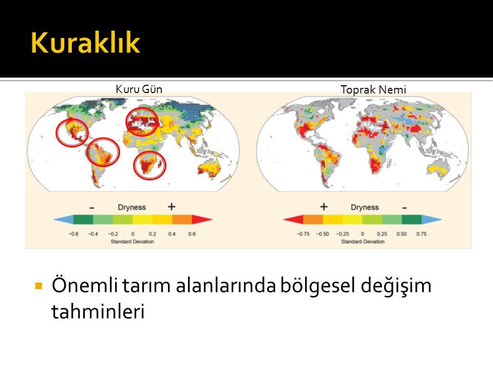 Kuraklık Önemli tarım alanlarında bölgesel değişim tahminleri Kuru Gün