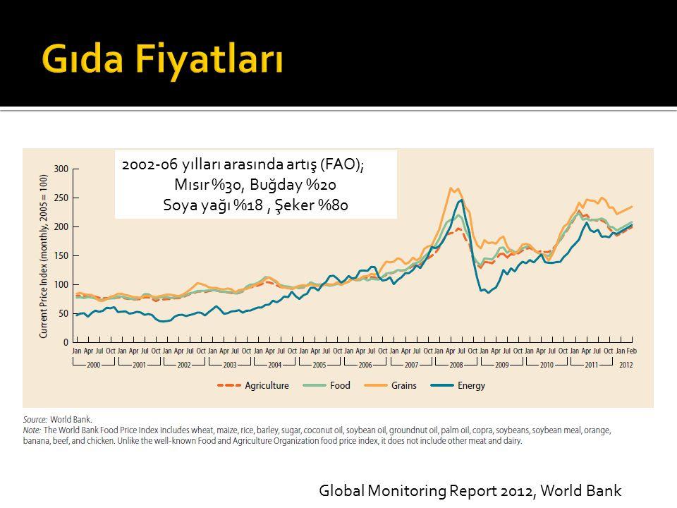 Gıda Fiyatları 2002-06 yılları arasında artış (FAO);
