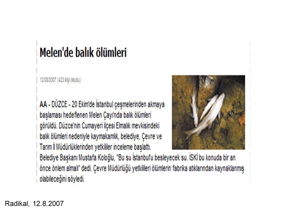 Radikal, 12.8.2007