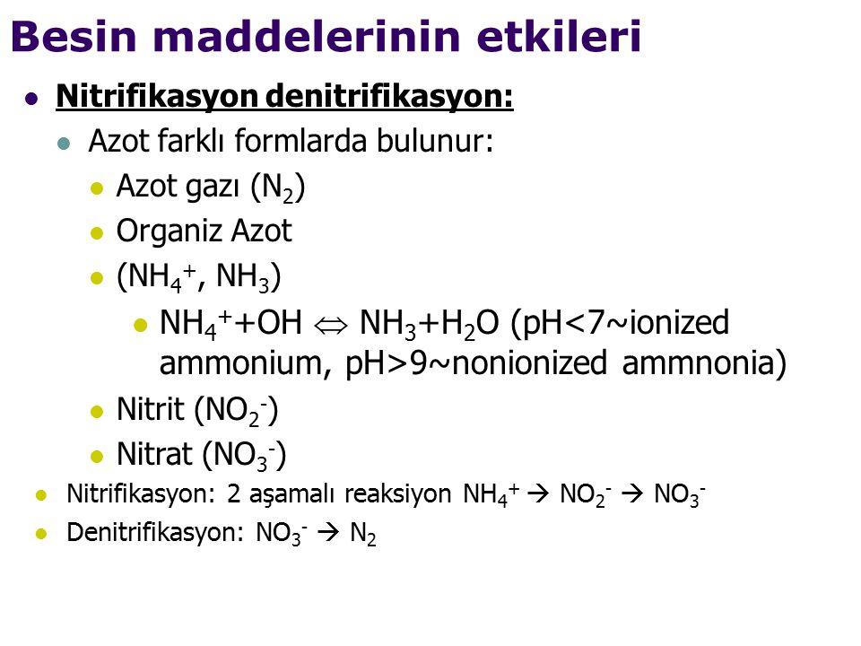 Besin maddelerinin etkileri