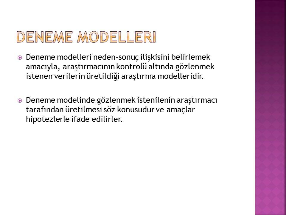 Deneme Modelleri