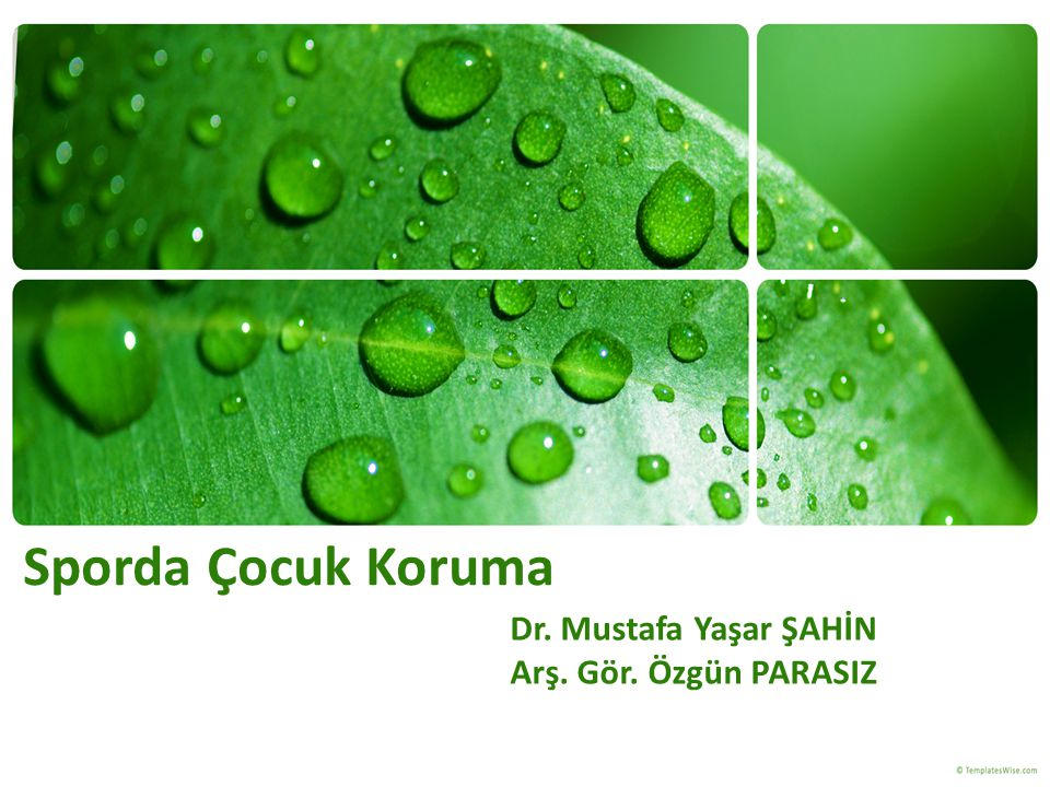 Dr. Mustafa Yaşar ŞAHİN Arş. Gör. Özgün PARASIZ