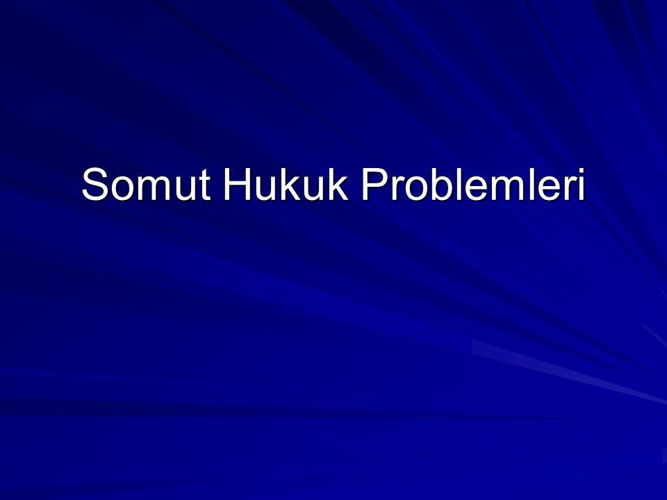 Somut Hukuk Problemleri