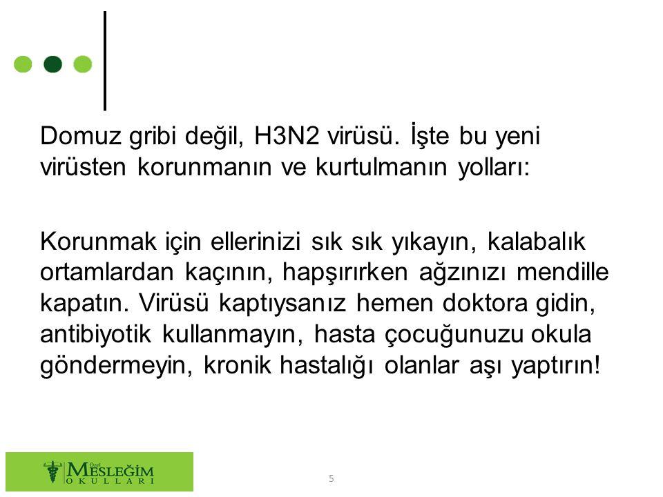 Domuz gribi değil, H3N2 virüsü