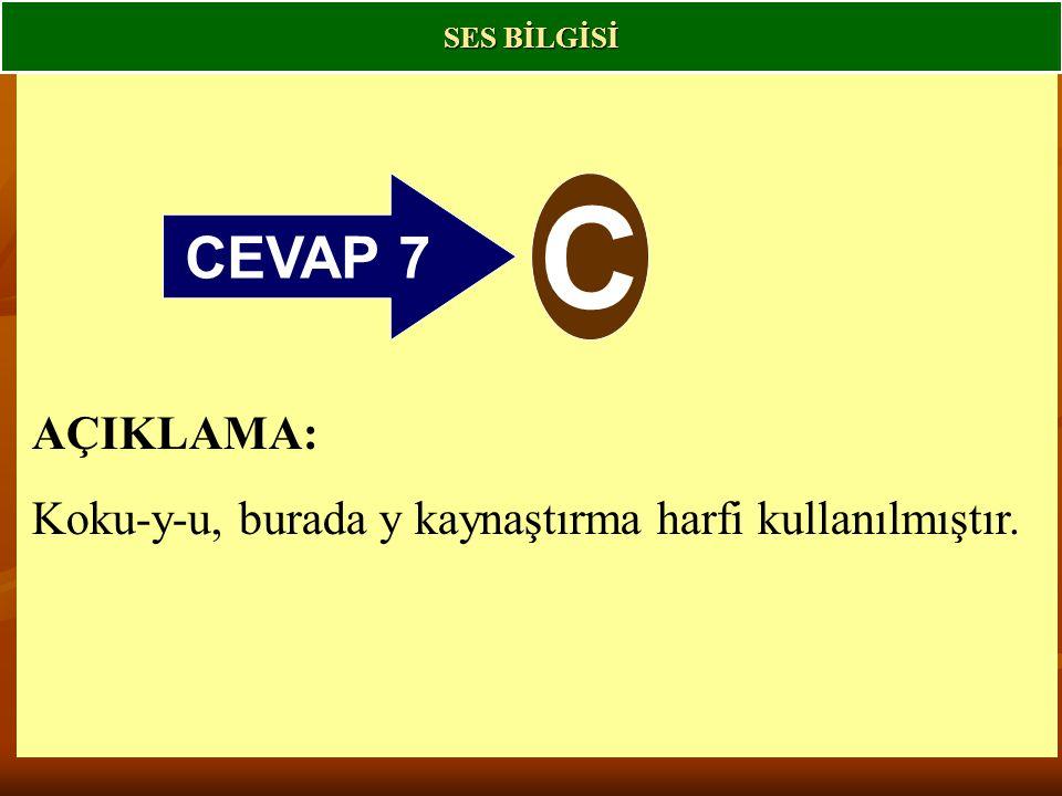 SES BİLGİSİ CEVAP 7 C AÇIKLAMA: Koku-y-u, burada y kaynaştırma harfi kullanılmıştır.
