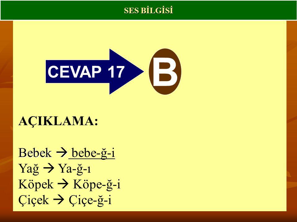 B CEVAP 17 AÇIKLAMA: Bebek  bebe-ğ-i Yağ  Ya-ğ-ı Köpek  Köpe-ğ-i