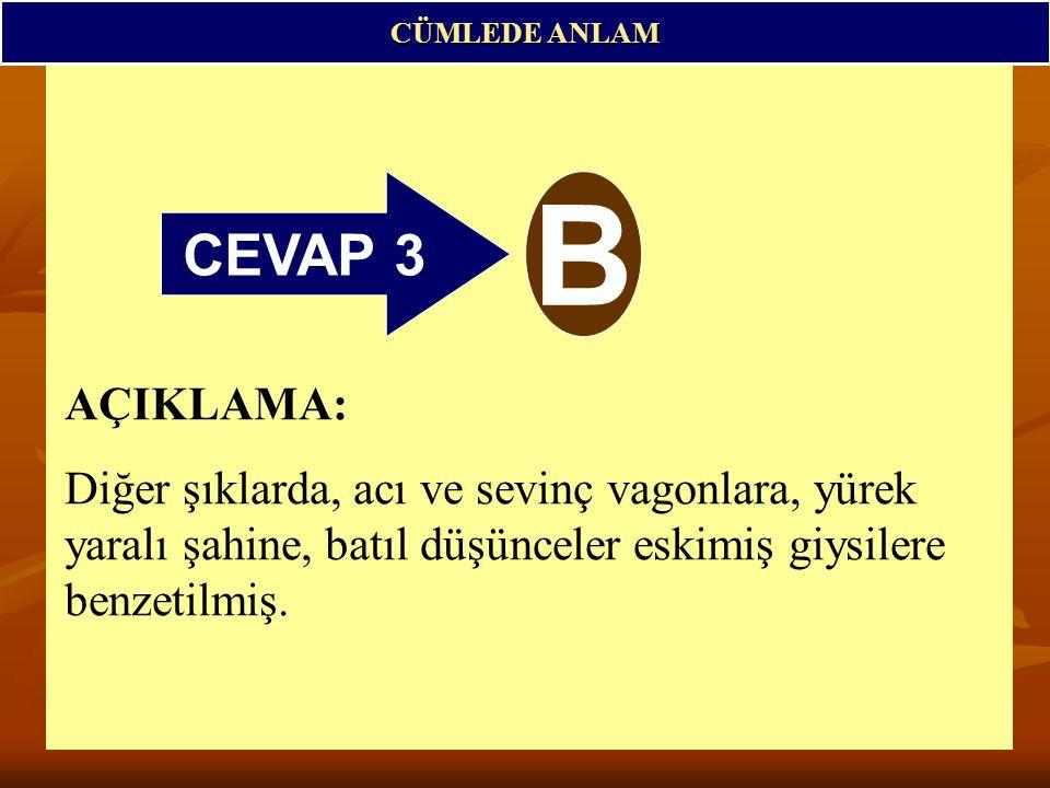 CÜMLEDE ANLAM CEVAP 3. B.