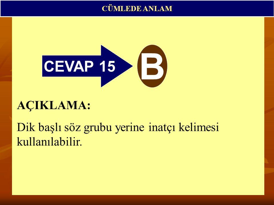 CÜMLEDE ANLAM CEVAP 15 B AÇIKLAMA: Dik başlı söz grubu yerine inatçı kelimesi kullanılabilir.