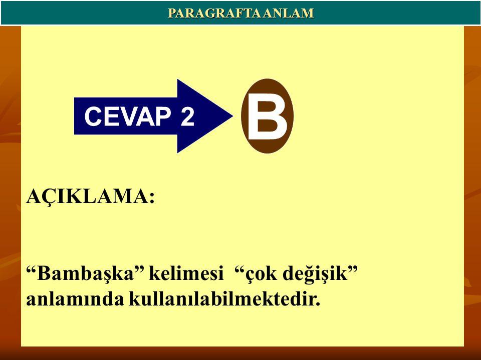 PARAGRAFTA ANLAM CEVAP 2. B.
