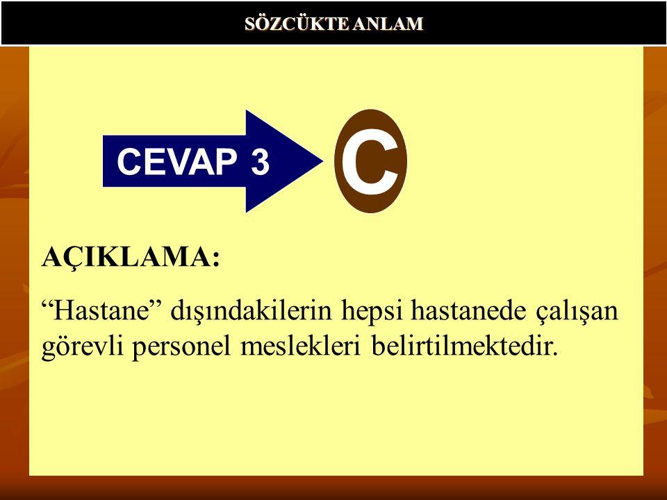 SÖZCÜKTE ANLAM CEVAP 3. C.