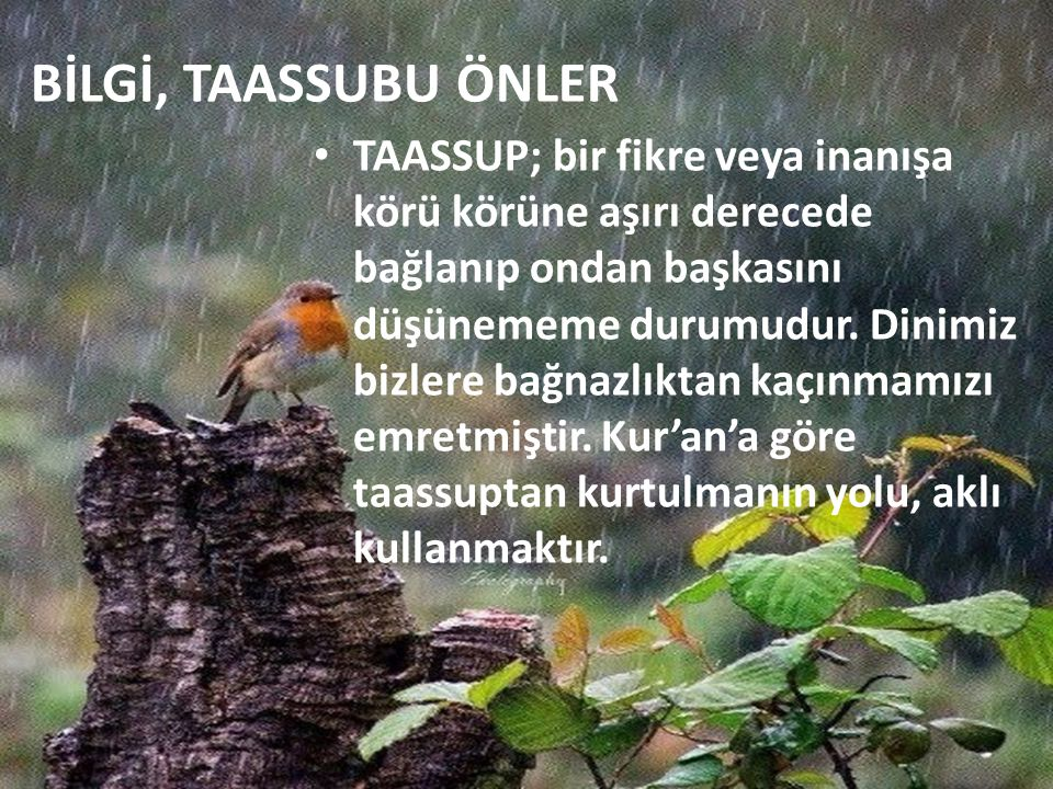 BİLGİ, TAASSUBU ÖNLER