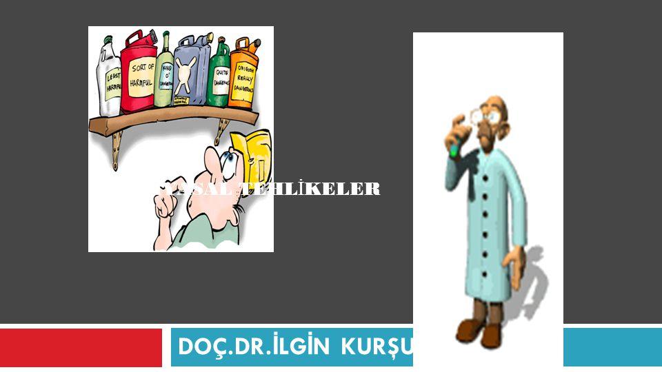 KİMYASAL TEHLİKELER DOÇ.DR.İLGİN KURŞUN