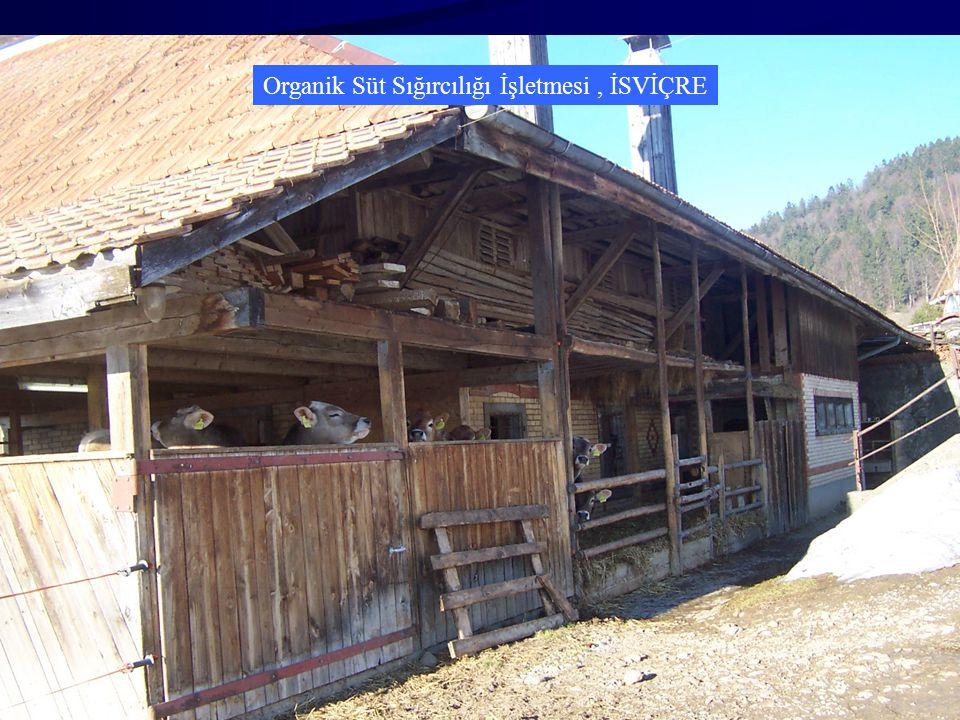 Organik Süt Sığırcılığı İşletmesi , İSVİÇRE