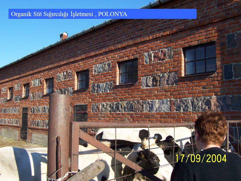 Organik Süt Sığırcılığı İşletmesi , POLONYA
