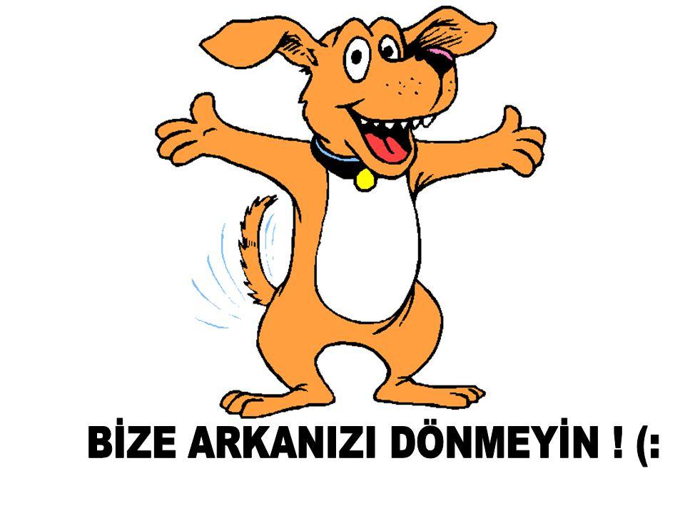 BİZE ARKANIZI DÖNMEYİN ! (: