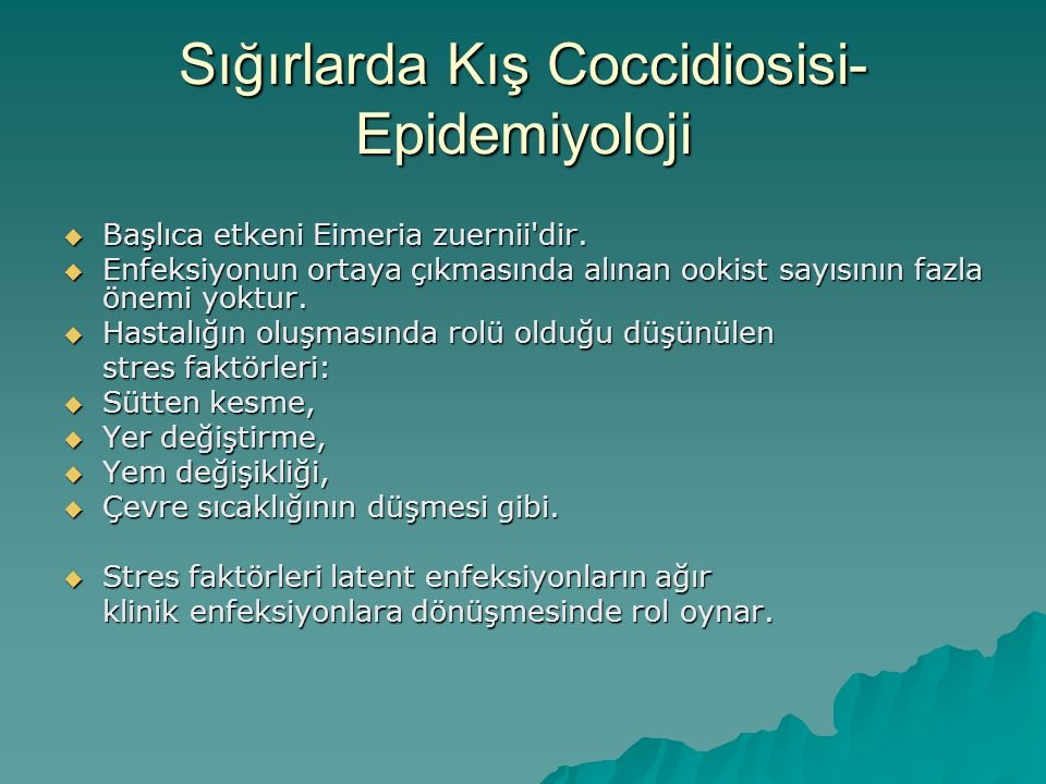 Sığırlarda Kış Coccidiosisi-Epidemiyoloji