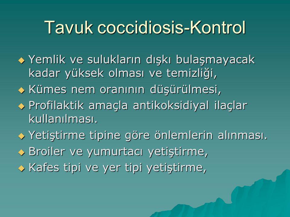 Tavuk coccidiosis-Kontrol
