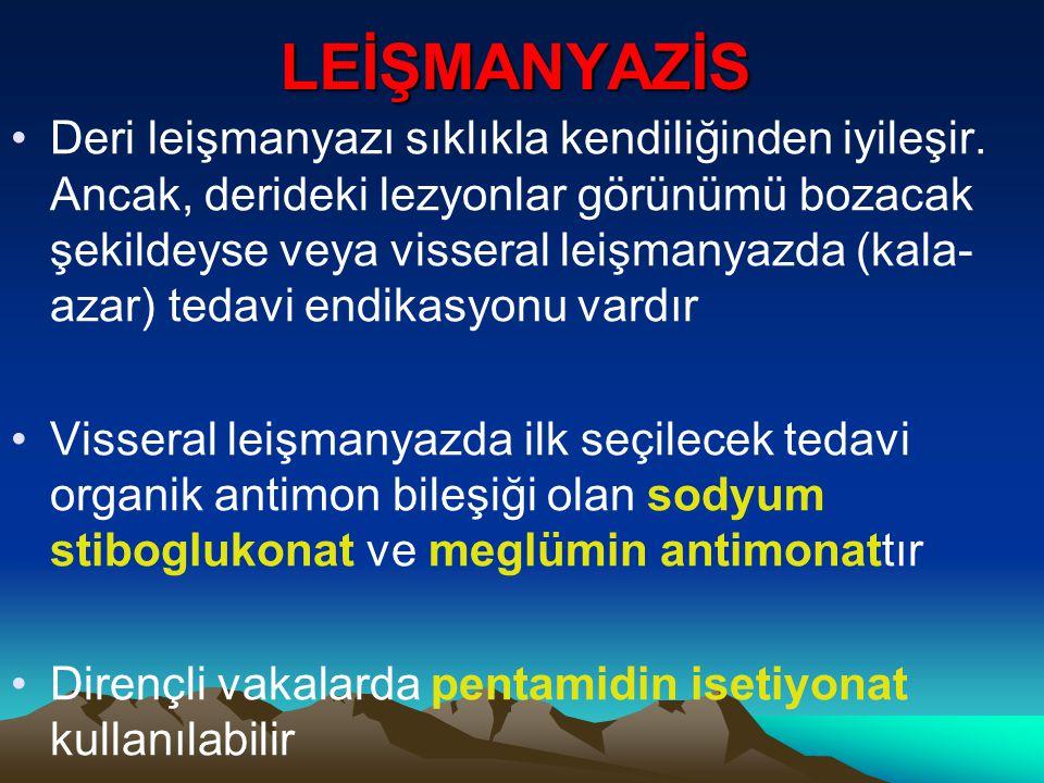 LEİŞMANYAZİS