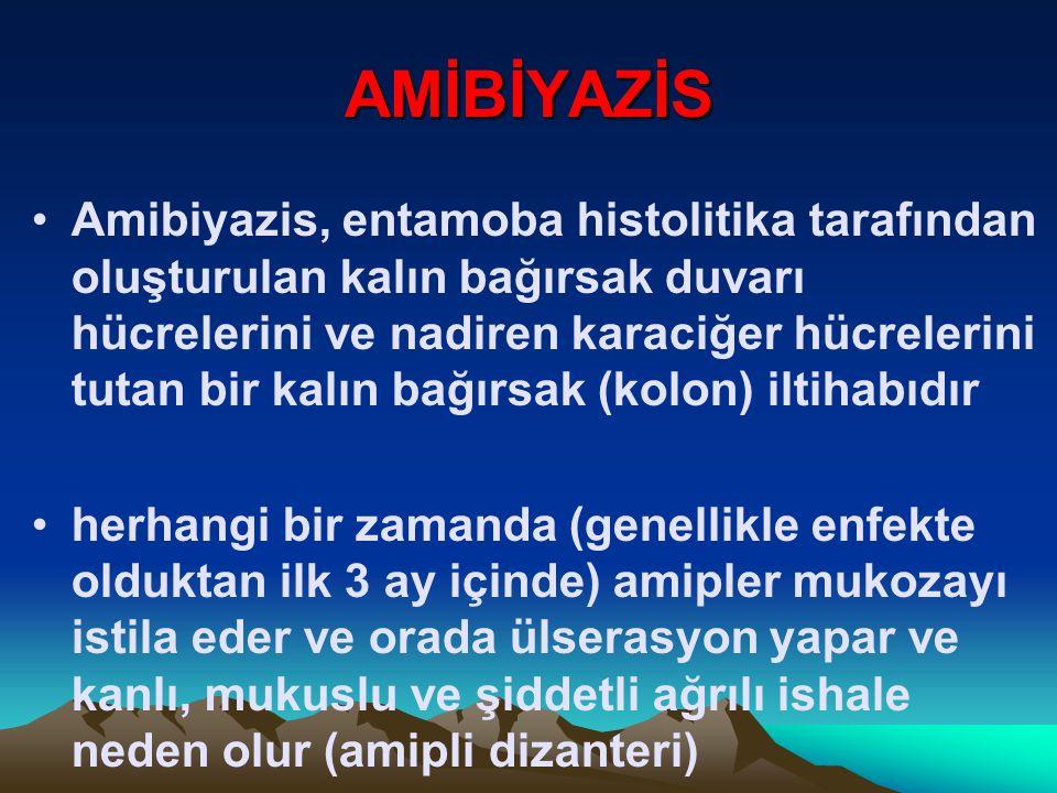 AMİBİYAZİS