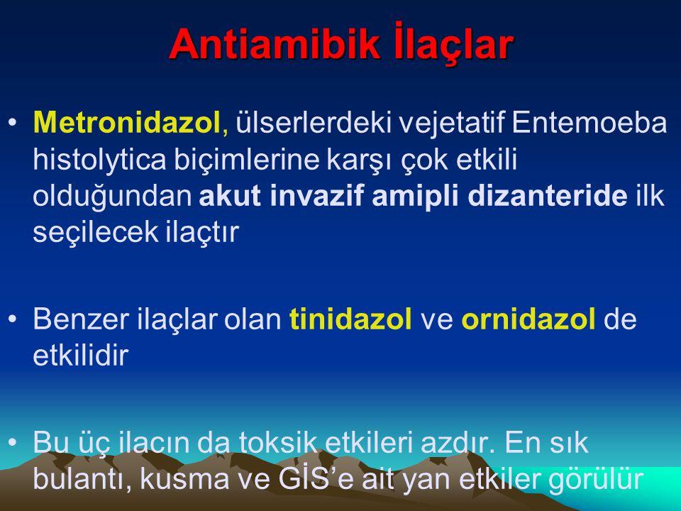 Antiamibik İlaçlar