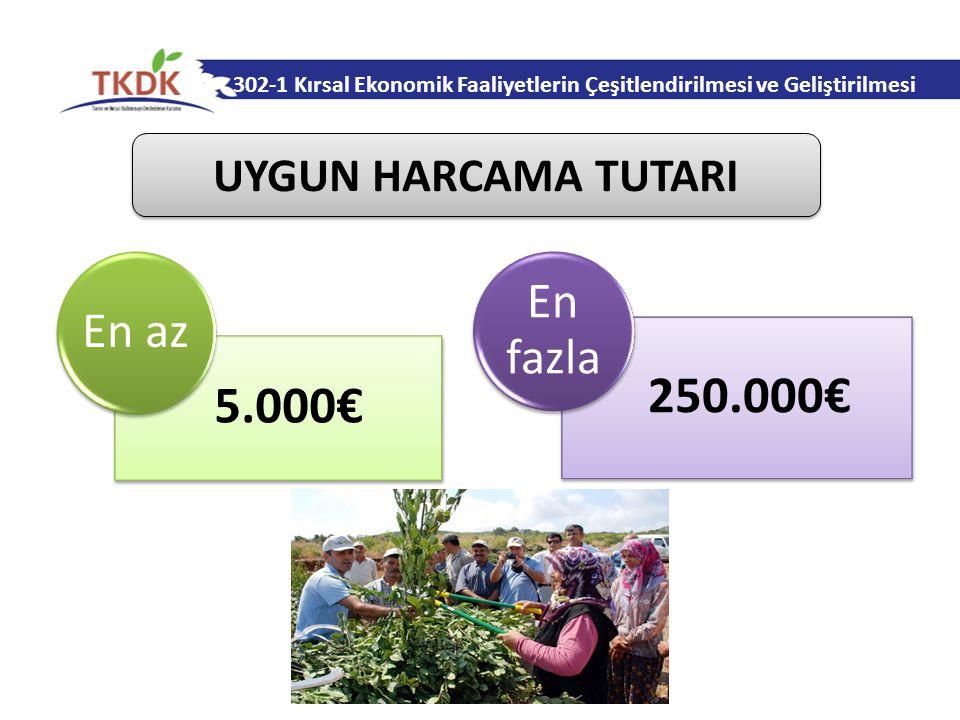 250.000€ 5.000€ UYGUN HARCAMA TUTARI