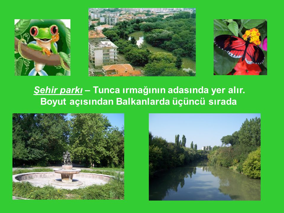 Şehir parkı – Tunca ırmağının adasında yer alır