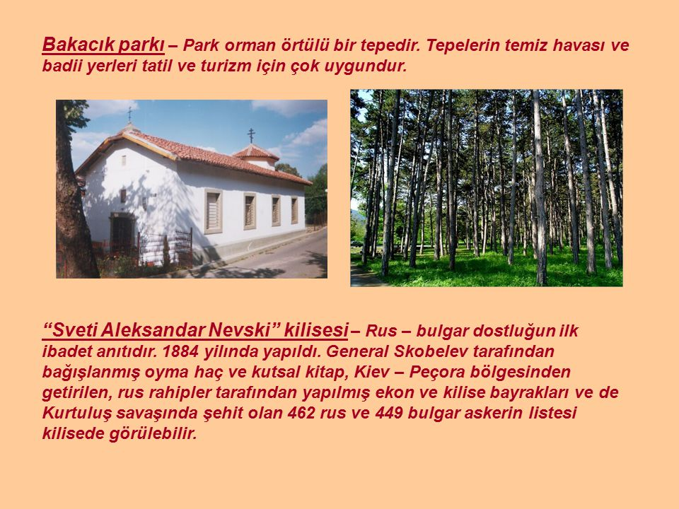Bakacık parkı – Park orman örtülü bir tepedir