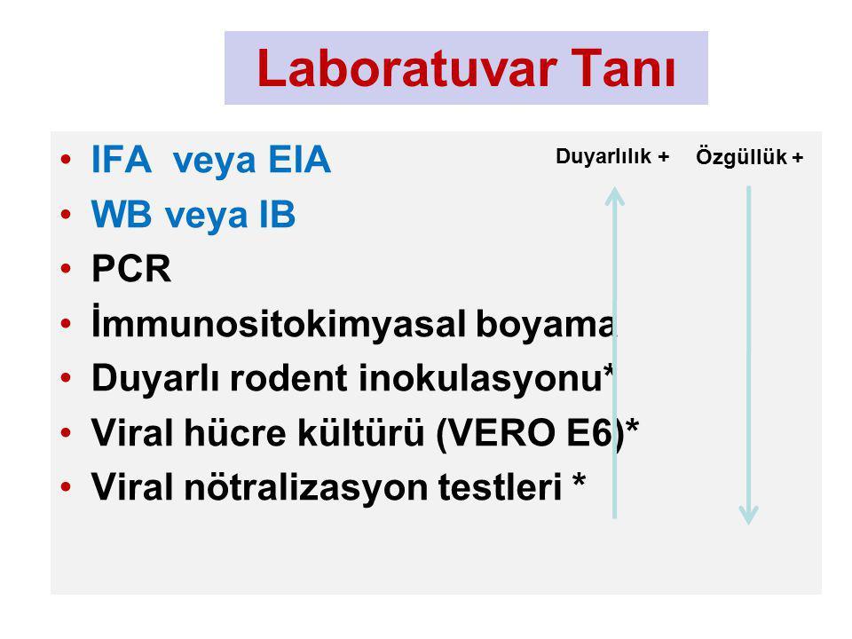 Laboratuvar Tanı IFA veya EIA WB veya IB PCR İmmunositokimyasal boyama