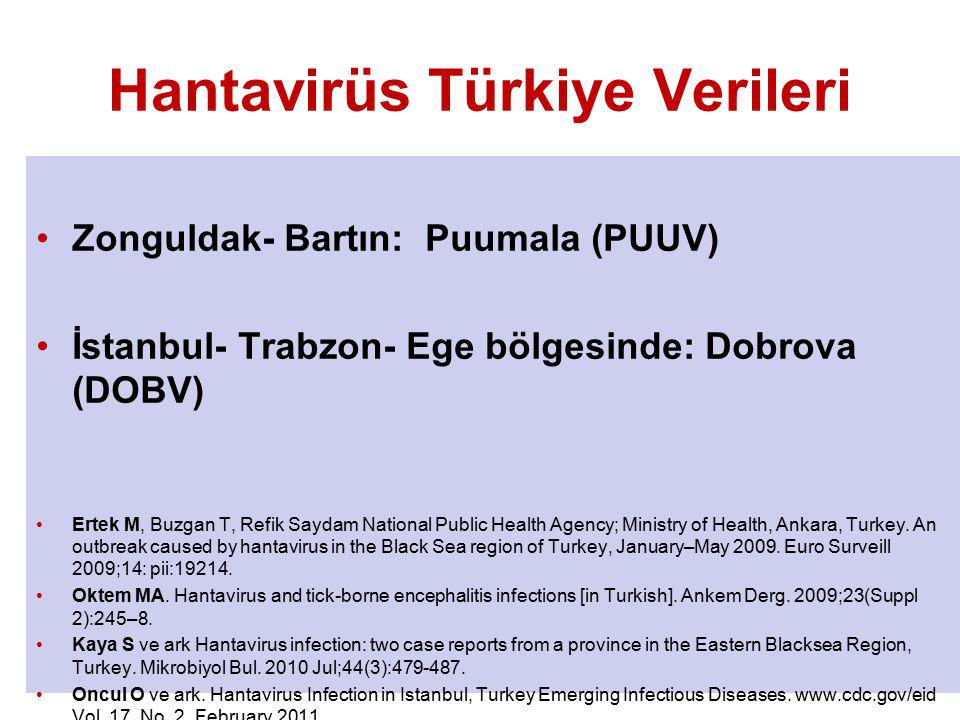 Hantavirüs Türkiye Verileri