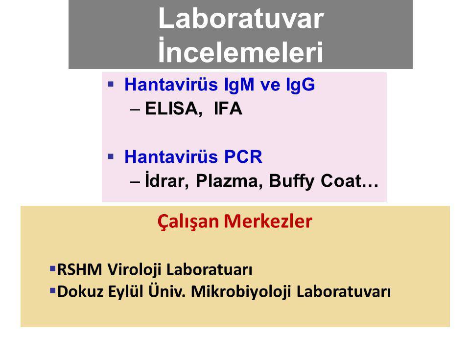 Laboratuvar İncelemeleri