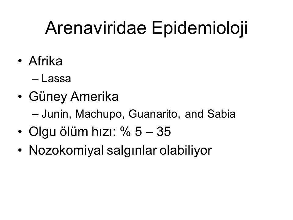 Arenaviridae Epidemioloji