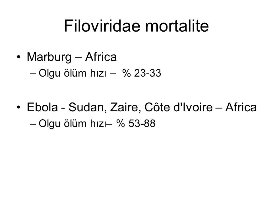 Filoviridae mortalite