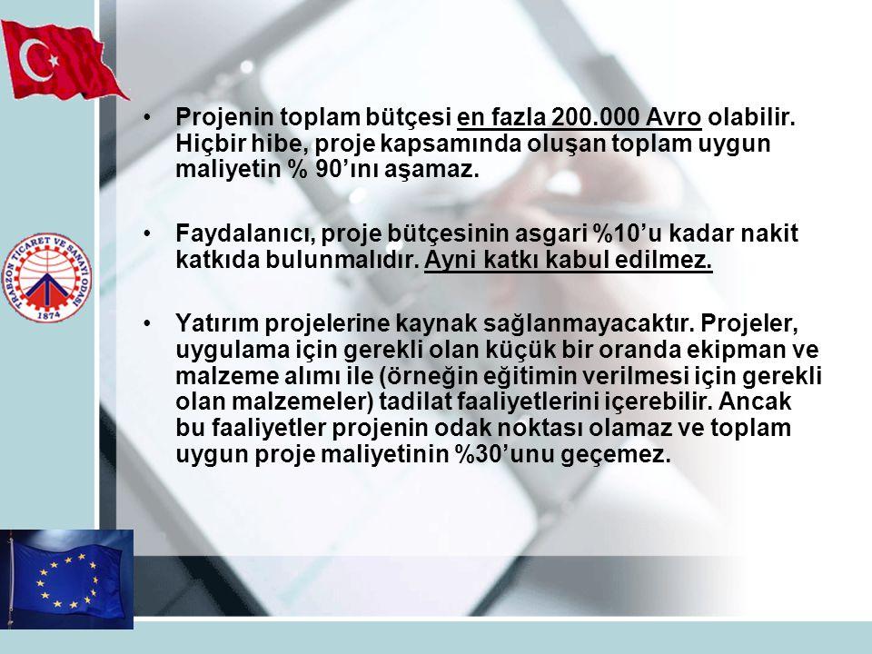 Projenin toplam bütçesi en fazla 200. 000 Avro olabilir