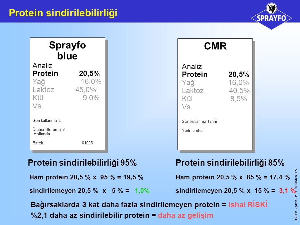 Protein sindirilebilirliği