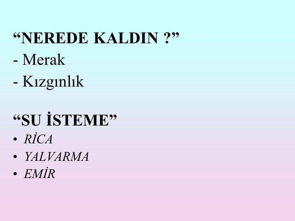 NEREDE KALDIN - Merak - Kızgınlık SU İSTEME RİCA YALVARMA EMİR