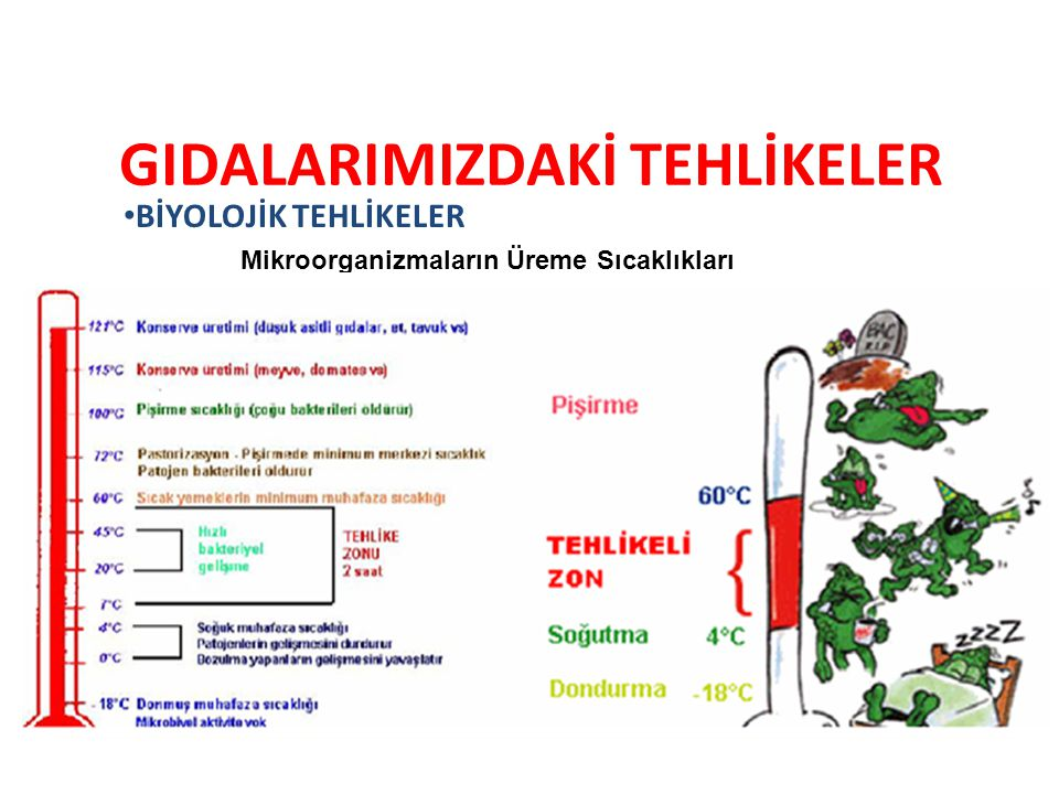 GIDALARIMIZDAKİ TEHLİKELER Mikroorganizmaların Üreme Sıcaklıkları