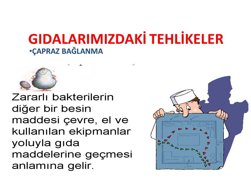 GIDALARIMIZDAKİ TEHLİKELER
