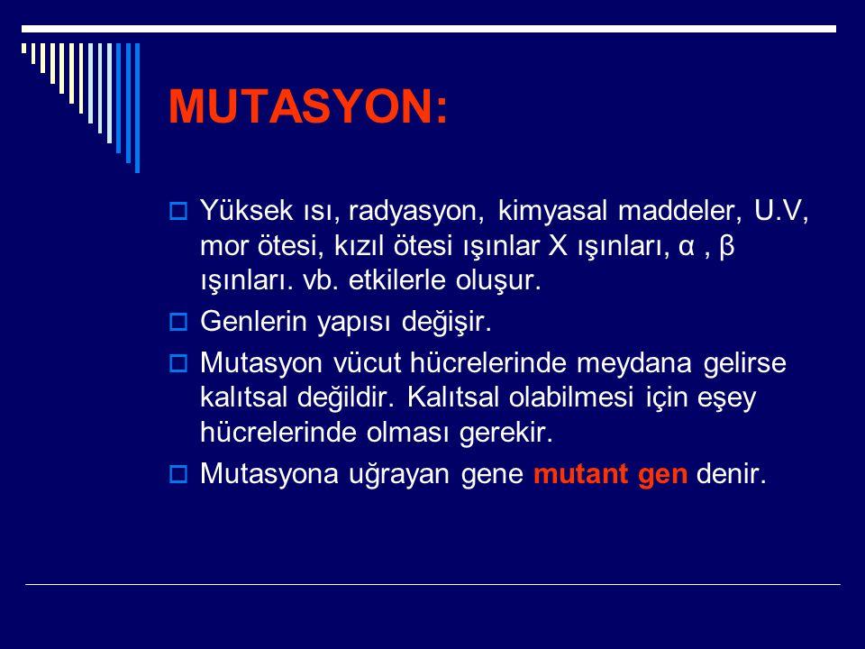MUTASYON: Yüksek ısı, radyasyon, kimyasal maddeler, U.V, mor ötesi, kızıl ötesi ışınlar X ışınları, α , β ışınları. vb. etkilerle oluşur.