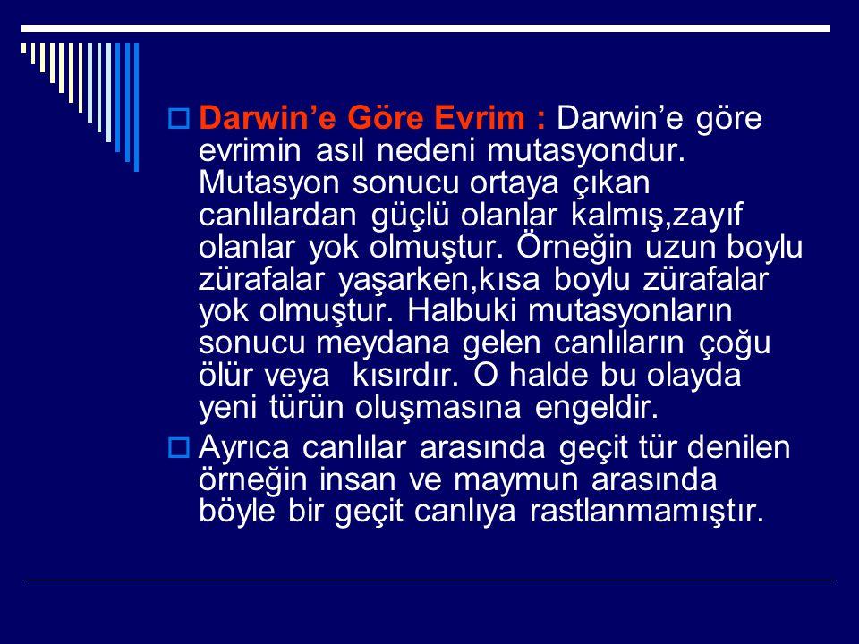 Darwin'e Göre Evrim : Darwin'e göre evrimin asıl nedeni mutasyondur