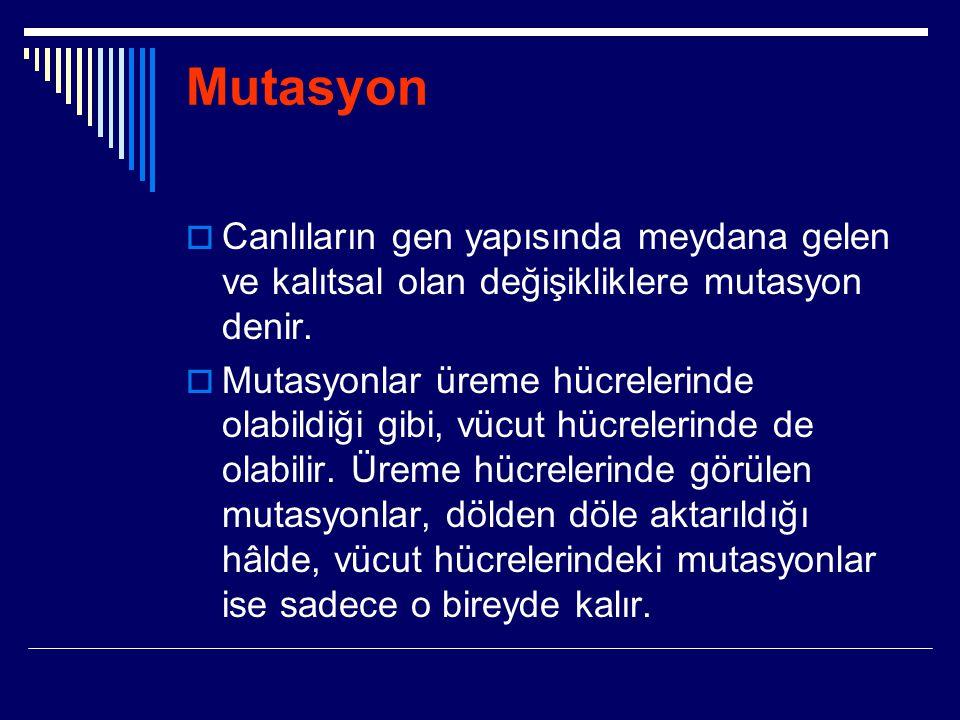 Mutasyon Canlıların gen yapısında meydana gelen ve kalıtsal olan değişikliklere mutasyon denir.