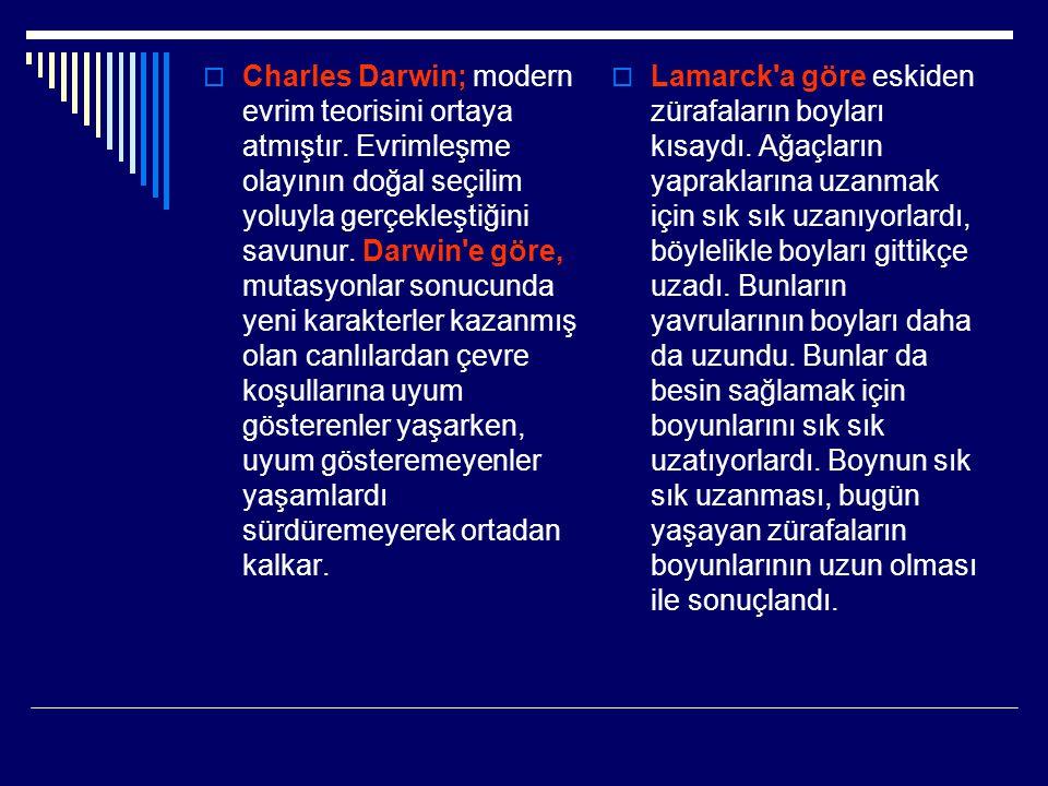 Charles Darwin; modern evrim teorisini ortaya atmıştır