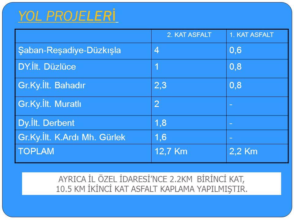 YOL PROJELERİ Şaban-Reşadiye-Düzkışla 4 0,6 DY.İlt. Düzlüce 1 0,8