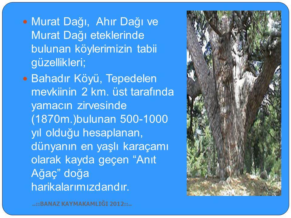 Murat Dağı, Ahır Dağı ve Murat Dağı eteklerinde bulunan köylerimizin tabii güzellikleri;