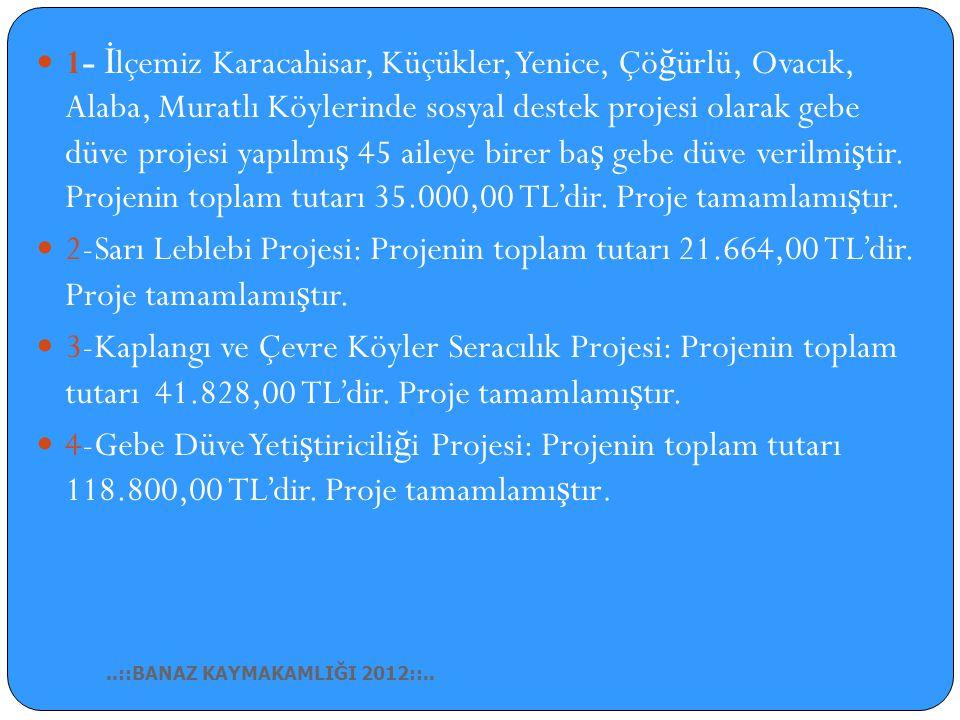 1- İlçemiz Karacahisar, Küçükler, Yenice, Çöğürlü, Ovacık, Alaba, Muratlı Köylerinde sosyal destek projesi olarak gebe düve projesi yapılmış 45 aileye birer baş gebe düve verilmiştir. Projenin toplam tutarı 35.000,00 TL'dir. Proje tamamlamıştır.