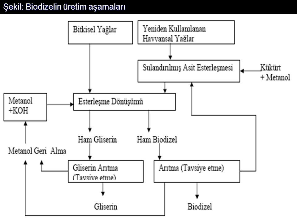 Şekil: Biodizelin üretim aşamaları