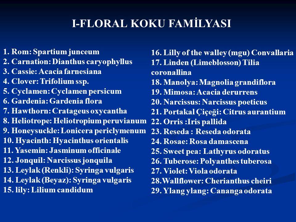 I-FLORAL KOKU FAMİLYASI