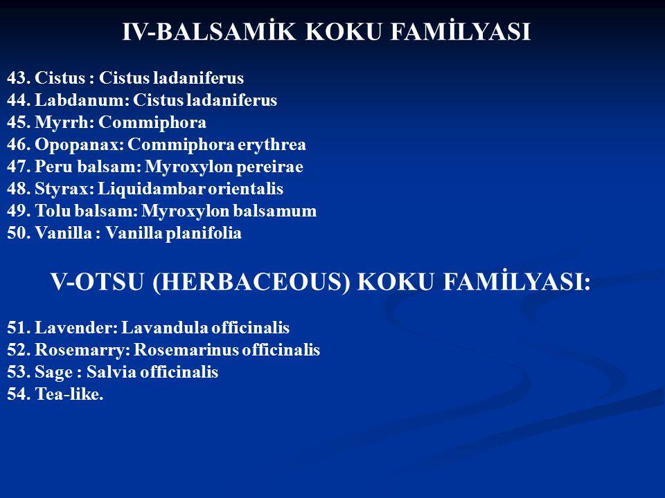 IV-BALSAMİK KOKU FAMİLYASI V-OTSU (HERBACEOUS) KOKU FAMİLYASI: