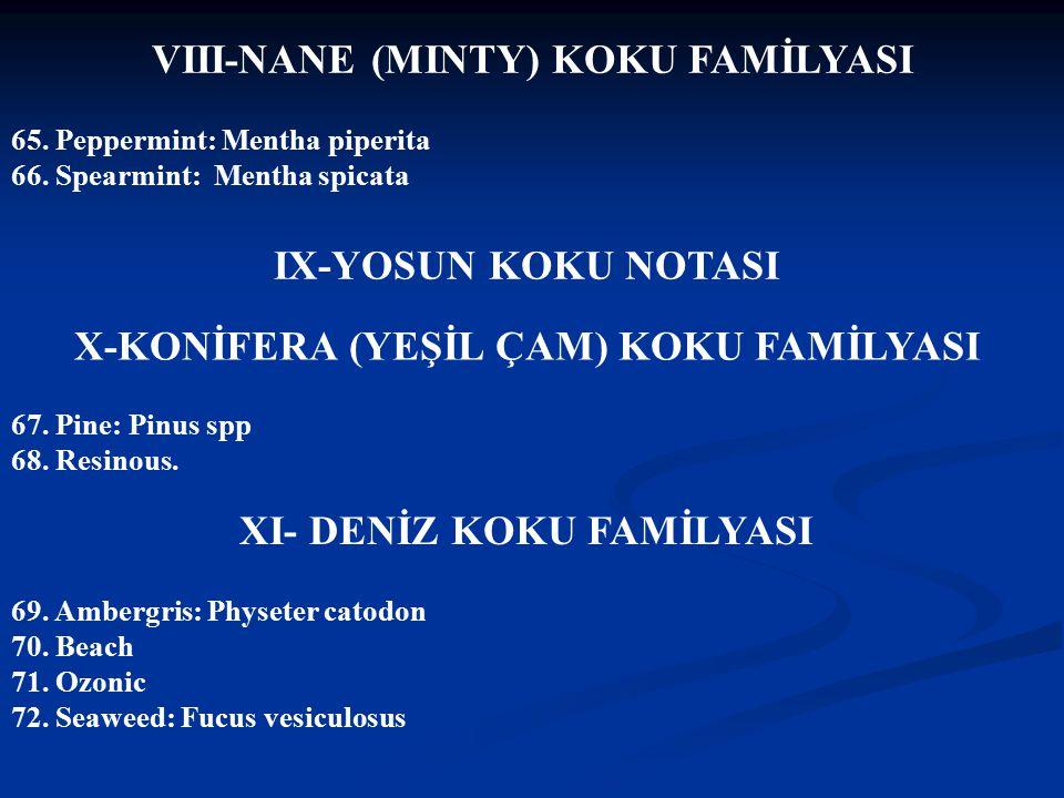 VIII-NANE (MINTY) KOKU FAMİLYASI