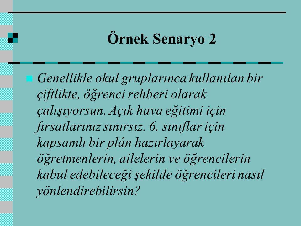 Örnek Senaryo 2